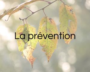 La prévention - Infos pratiques
