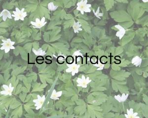 Les contacts - Infos pratiques