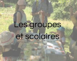 Les groupes et scolaires - Visites