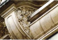 Feuilles et glands de chêne sessile sur le bâtiment de L'Est Républicain à Nancy