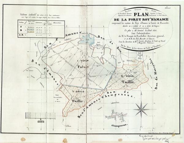 Plan de la forêt royale d'Amance en 1826