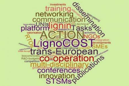 04 juin 2018 - FARE participe à une action COST sur les lignines