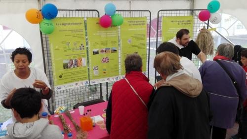 07 octobre 2019 - Participation de FARE à la Fête de la Science