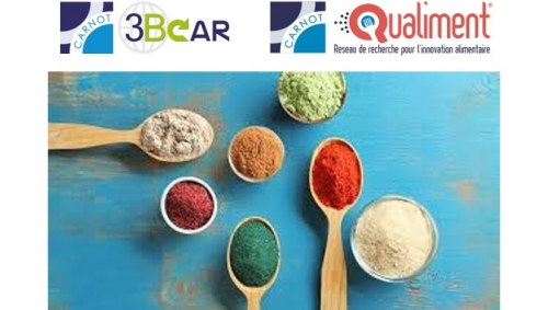 11 mars 2021 - La chaire AFERE de FARE porte le projet ColorANTH inter-Carnot 3BCAR et Qualiment