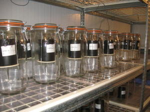 Biodégradation_CN