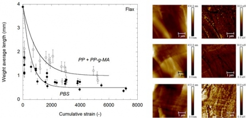 06 July 2020 - Influence of the matrix polarity on the breakage of fibers in a composite