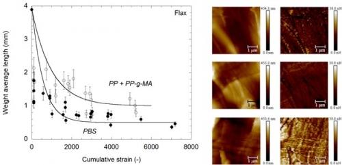 06 juillet 2020 - Influence de la polarité de la matrice sur la rupture de fibres dans un composite
