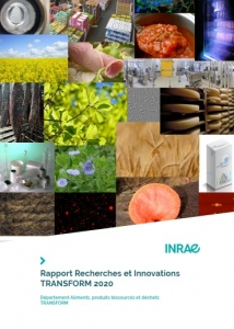 08 October 2020 - FARE in the 2020 Research & Innovation report of the TRANSFORM Division