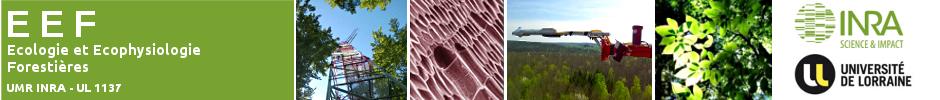 Unité Ecologie et Ecophysiologie Forestières