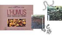 L'humus sous toutes ses formes