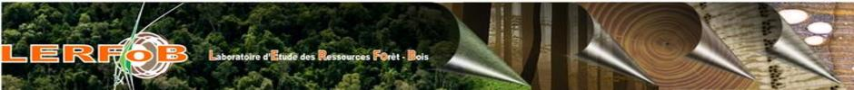 Welcome in LERFoB website