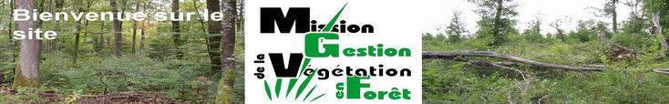 Bienvenue sur le site de MGVF