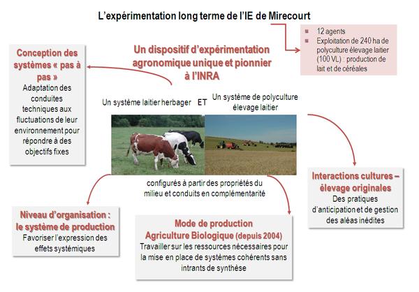 Unité INRA SAD ASTER Mirecourt - expérimentation système