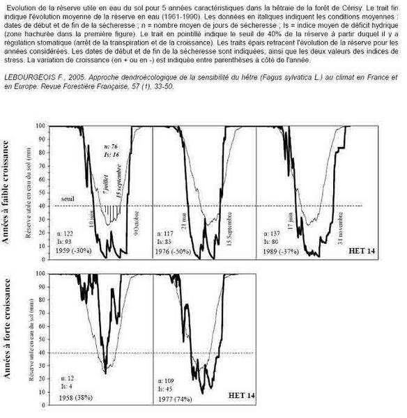 Approche dendrochronologie de la sensibilité du hêtre