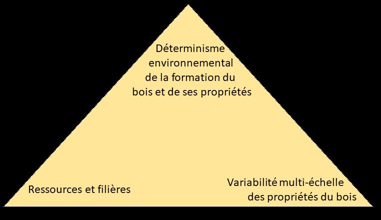 triangle des thématiques de Wood-Stock