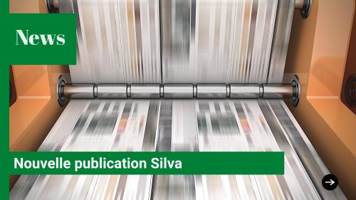 Publication Silva