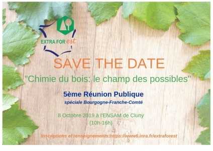 image save the date